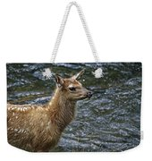 Firehole River Elk Fawn Weekender Tote Bag