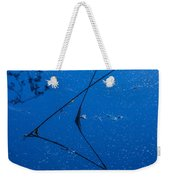First Frost-3 Weekender Tote Bag
