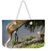 First Time At The Lake Weekender Tote Bag