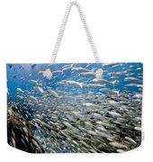 Fish Freeway Weekender Tote Bag