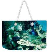 Fish In The Coral Weekender Tote Bag
