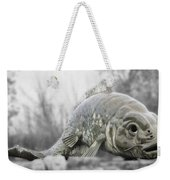 Fish Sculpture Weekender Tote Bag