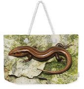 Five-lined Skink Weekender Tote Bag
