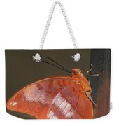 Flame-bordered Charaxes Butterfly #3 Weekender Tote Bag