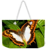 Flame Bordered Charaxes Butterfly Weekender Tote Bag