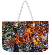 Flaming Maple Beneath The Pines Weekender Tote Bag