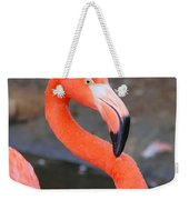 Flamingo Close Up Weekender Tote Bag