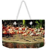 Flamingo Family Reunion Weekender Tote Bag