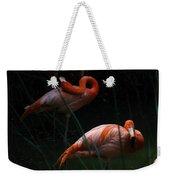 Flamingo Morning Weekender Tote Bag