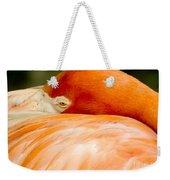 Flamingo Napping Weekender Tote Bag