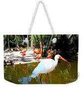 Flamingo Park Florida Weekender Tote Bag