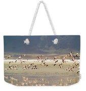 Flamingos Flying Over Water Weekender Tote Bag