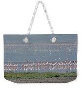 Flamingos On Lake Magadi Weekender Tote Bag