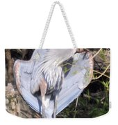 Flasher In The Park Weekender Tote Bag