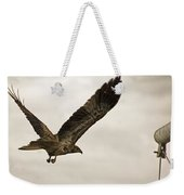 Flight Of The Brown Kite V7 Weekender Tote Bag