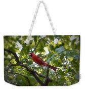 Flight Of The Cardinal Weekender Tote Bag