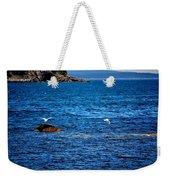 Flight Of The Seagulls Weekender Tote Bag