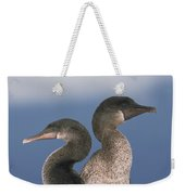 Flightless Cormorant Pair Galapagos Weekender Tote Bag