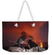 Flightless Cormorants And Volcanic Weekender Tote Bag