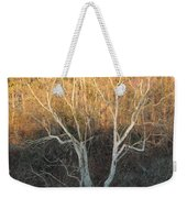 Flint River 12 Weekender Tote Bag