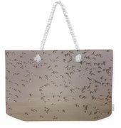 Flock Of Plovers Weekender Tote Bag