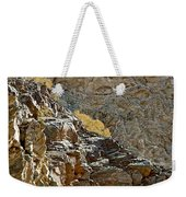 Flora In Sunlight In Big Painted Canyon Trail In Mecca Hills-ca Weekender Tote Bag