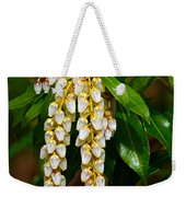 Floral Hanging Lanterns From Japan Weekender Tote Bag