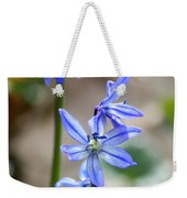 Floral Ladder  Weekender Tote Bag