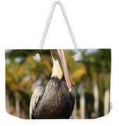 Florida Brown Pelican Weekender Tote Bag