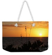 Florida Delight Weekender Tote Bag
