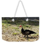 Florida Duck On Green Grass Weekender Tote Bag