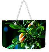 Florida Oranges Weekender Tote Bag