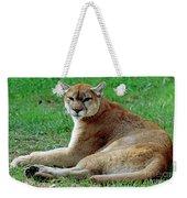 Florida Panther Weekender Tote Bag