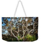 Florida Scrub Oaks Painted   Weekender Tote Bag