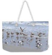 Florida Seabirds Weekender Tote Bag