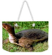 Florida Softshell Turtle Apalone Ferox Weekender Tote Bag