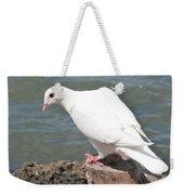 Florida White Pigeon Weekender Tote Bag
