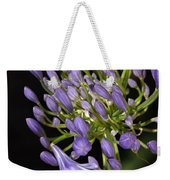 Flower- Agapanthus-blue-buds-one-flower Weekender Tote Bag