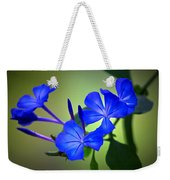 Flower Burst Weekender Tote Bag