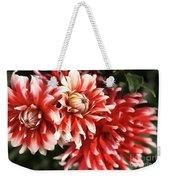 Flower-dahlia-red-white-trio Weekender Tote Bag