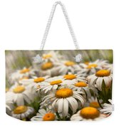 Flower - Daisy - Not Quite Fresh As A Daisy Weekender Tote Bag