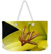 Flower Garden 28 Weekender Tote Bag
