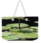Flower Garden 62 Weekender Tote Bag
