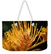 Flower-grevillea-australian Native Weekender Tote Bag