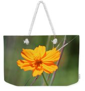 Flower Lit By The Sun's Rays Weekender Tote Bag