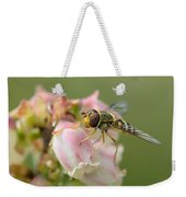 Flowerfly On Blueberry Blossom Weekender Tote Bag