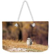 Fluffball Watching Weekender Tote Bag by Anne Gilbert