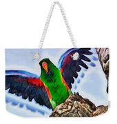 Fly And Shine Weekender Tote Bag