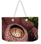 Fly Pollinating Rafflesia Sabah Borneo Weekender Tote Bag