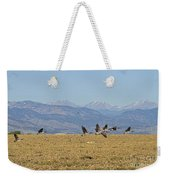 Flying Canadian Geese Colorado Rocky Mountains 1 Weekender Tote Bag